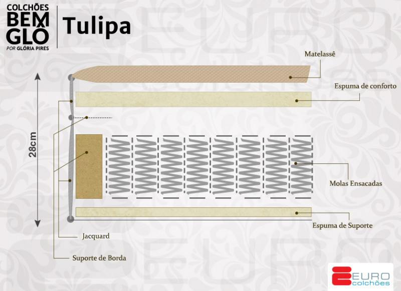 Bemglo-Tulipa-nova-9jun-2017