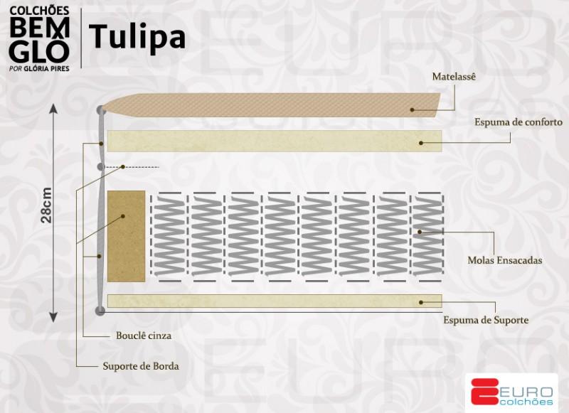 Bemglô-Tulipa-novo-2017